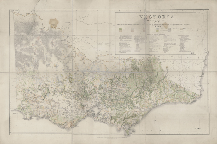 Victoria Distribution of Forest Trees (Everett, 1872)
