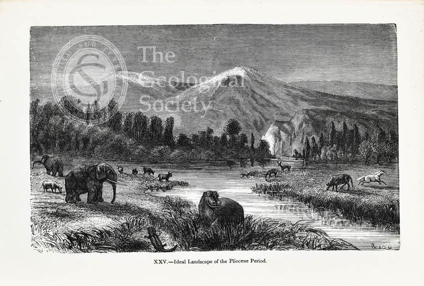 Ideal landscape of the Pliocene Period
