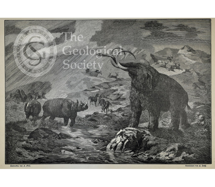 Scharkathal near Prague at the time of the Mammoth